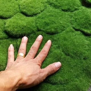 深圳市 仿真植物墙绿色假草坪 植毛海棉青苔草皮 苔藓