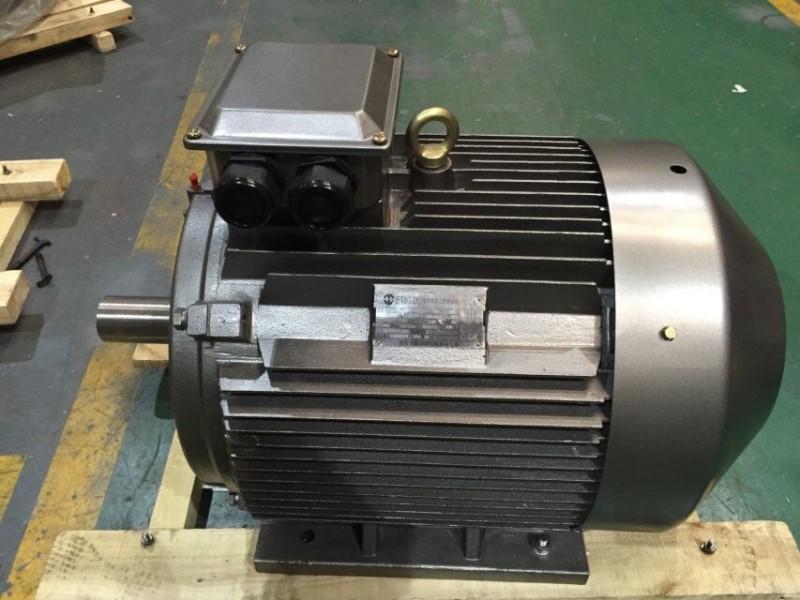 西安西玛电机YE3-315S-2 F级绝缘